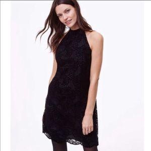 LOFT black velvet lace high neck dress - 6P